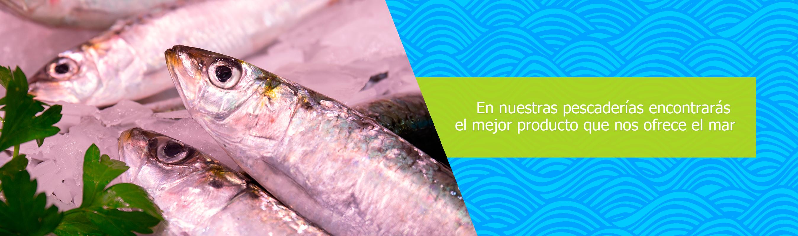pescaderia-prueba-1